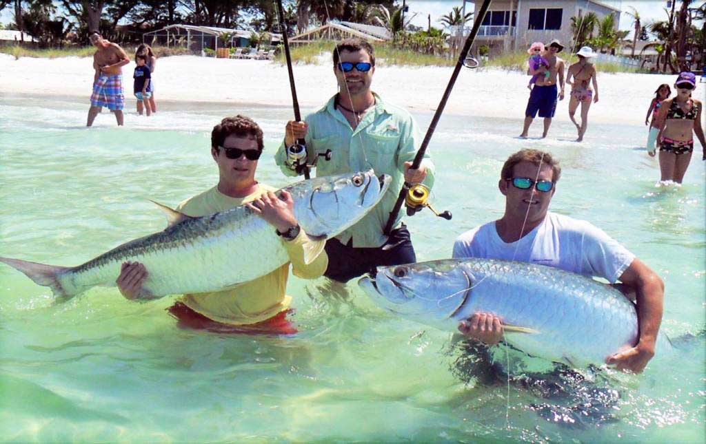 Tampa bay fishing charters tarpon inshore offshore for Anna maria island fishing charters